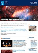 ESO Photo Release eso1340-en-us - Young Stars Cooking in the Prawn Nebula